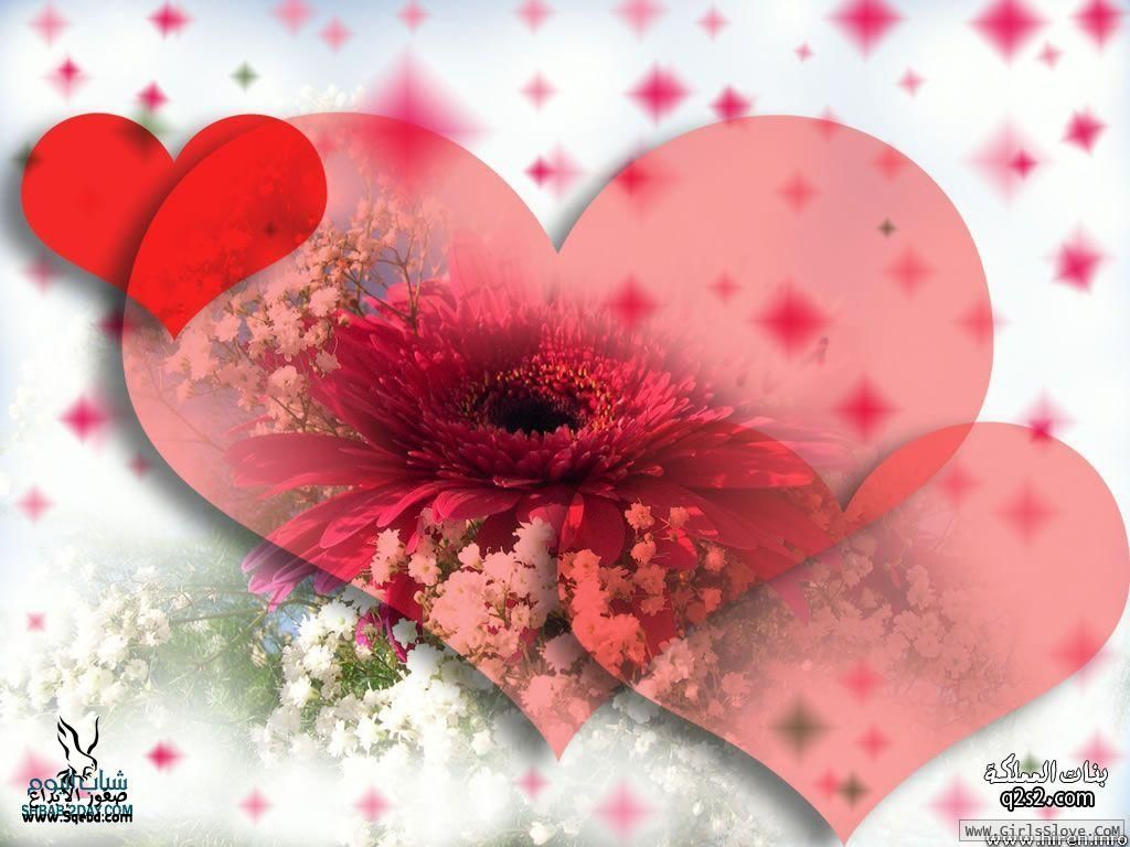 ��� ����   - ���� ���� - I love you 2013_1372815969_130.
