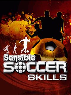 ���� �������Sensible Soccer Skills ������320x240 � 2013_1373549698_202.