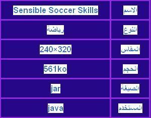 ���� �������Sensible Soccer Skills ������320x240 � 2013_1373549699_788.