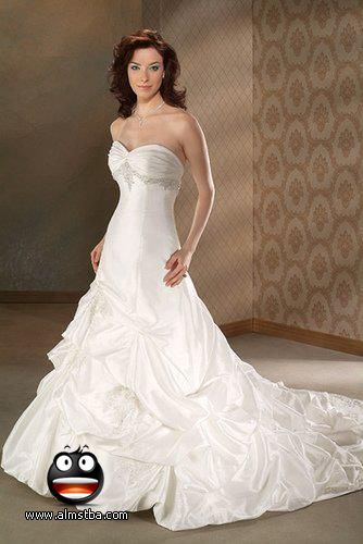 أجمل فستان للزفاف - صور فساتين زفاف 2013_1374706655_695.