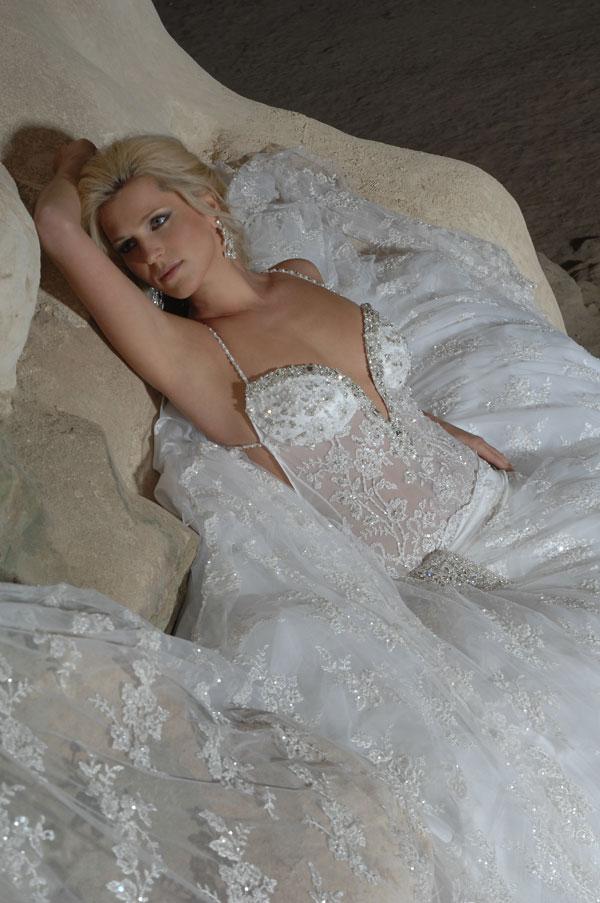أجمل فستان للزفاف - صور فساتين زفاف 2013_1374706656_169.