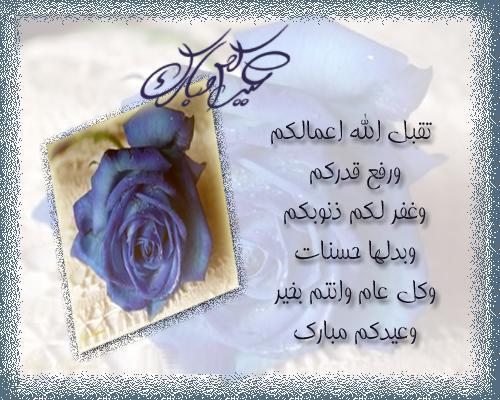 ������ ��� ����� ������� ������ , ���� ������ ����� , ������ ������ ����� 2013_1374972462_454.