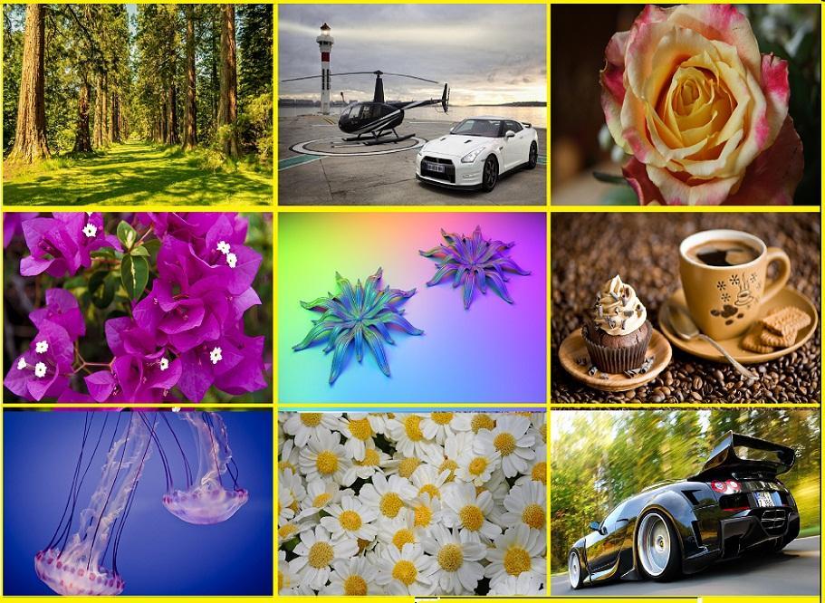 2013_1379577404_415.jpg