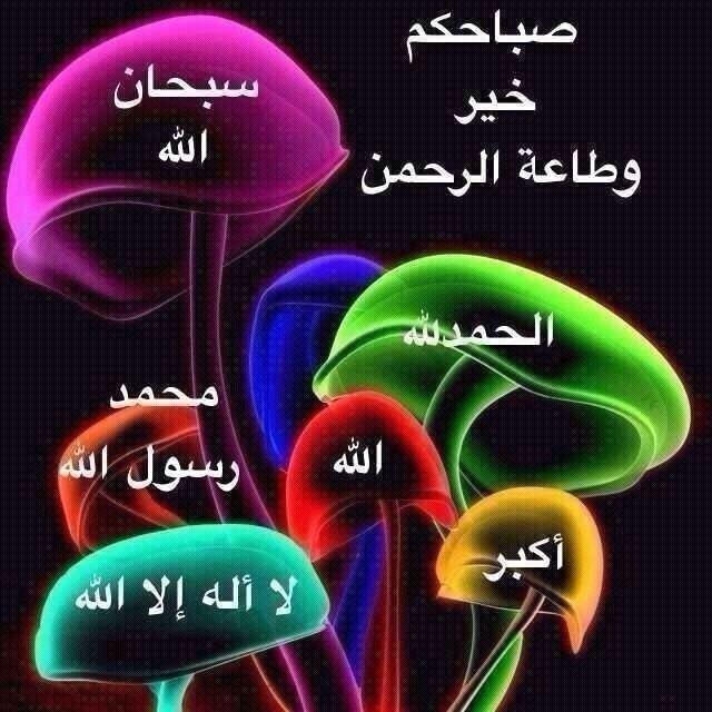 2013_1379800796_647.jpg