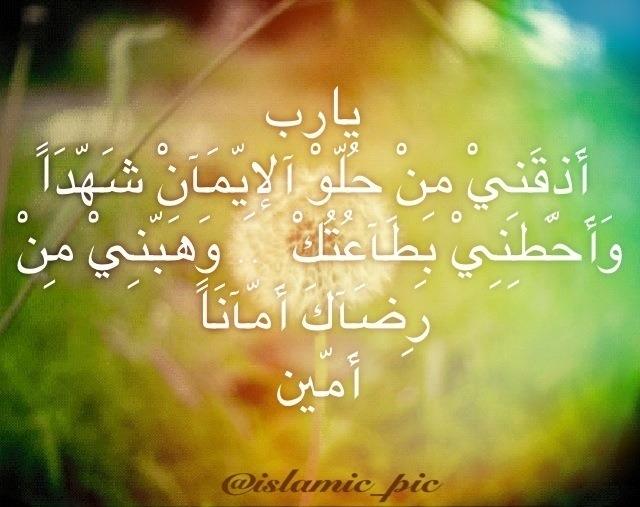 ��� ������� ����� 2015 - ��� ������ - ��� ����� ������ �� 2015 2013_1379800797_199.