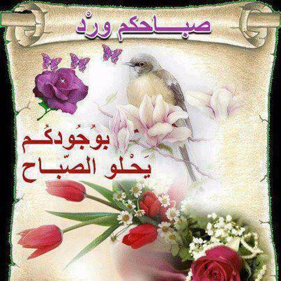 2013_1382756865_801.jpg
