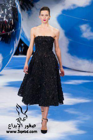 ��� ����� ������ ���� �����  , ���� ������ ������ ������ 2016, evening dresses 2013_1383128539_840.
