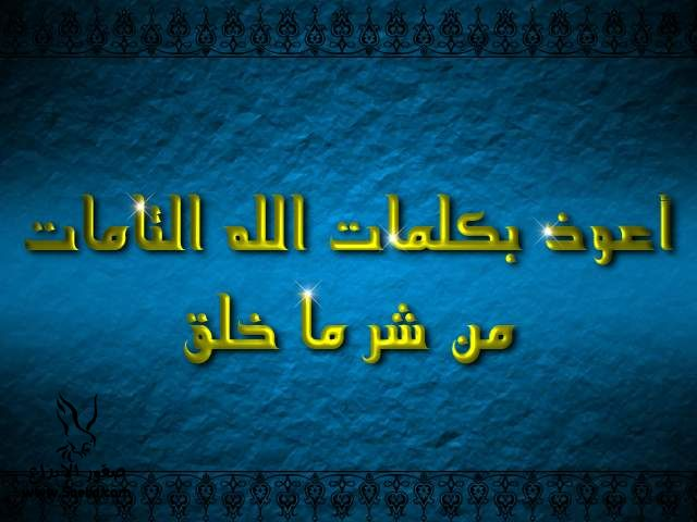 2013_1384549521_425.jpg