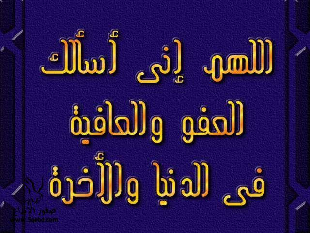 2013_1384549522_710.jpg