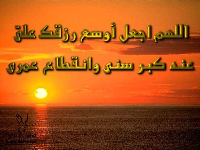 2013_1384549523_295.jpg