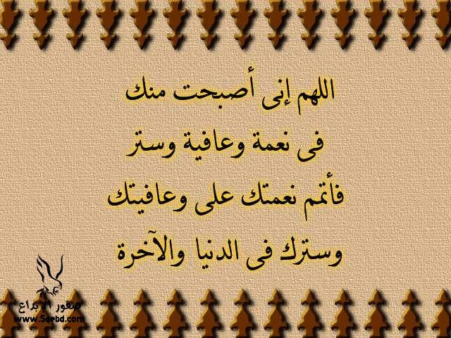 2013_1384549523_436.jpg
