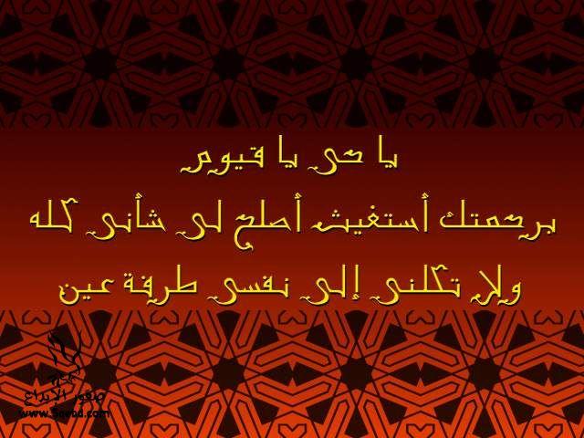 2013_1384549524_444.jpg