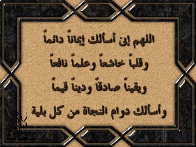 2013_1384549524_577.jpg