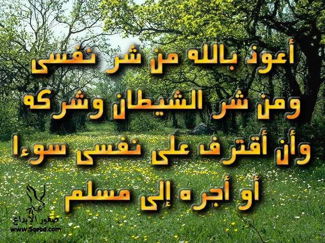 2013_1384549525_562.jpg