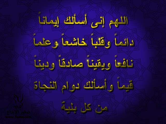2013_1384549525_948.jpg
