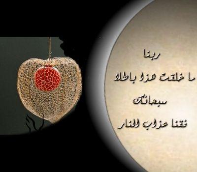 2013_1384551047_269.jpg