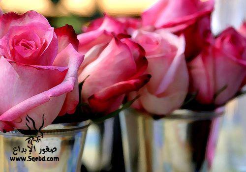���� ��� ��� 2016 Photos-Flowers-sowar-ward ���� ��� ����� 2013_1385009520_841.