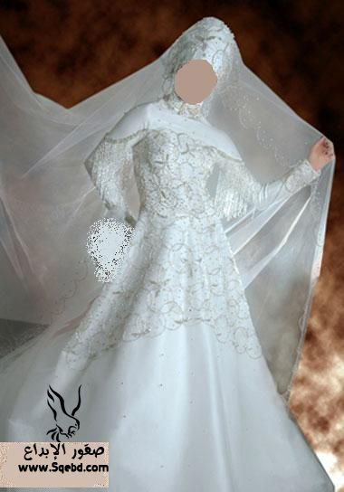 ���� ������ ���� ,  Wedding dresses veiled 2013_1385083817_841.