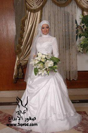 اجدد فساتين زفاف ,  Wedding dresses veiled 2013_1385083819_881.