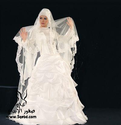 اجدد فساتين زفاف ,  Wedding dresses veiled 2013_1385083820_861.