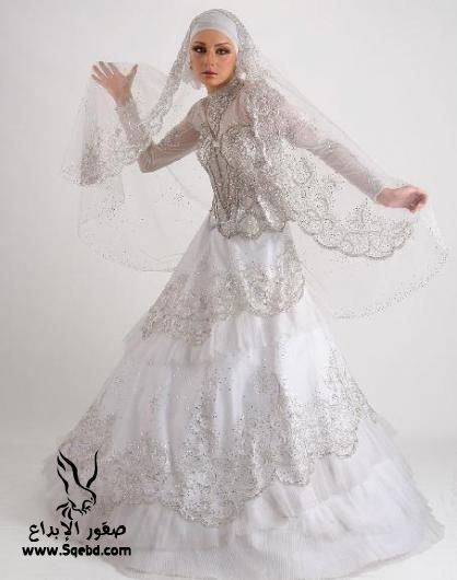 ���� ������ ���� ,  Wedding dresses veiled 2013_1385083826_914.