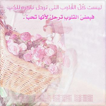 2014_1387412040_532.jpg