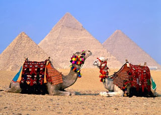 ��� ������� �������� ���� , ��� ���� ����� ������� �� ��� - Tourist areas in Egypt 2014_1387554952_301.
