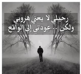 2014_1387831281_264.jpg