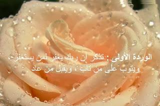 2014_1387831281_945.jpg