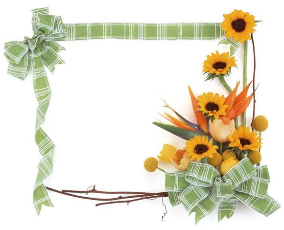 اطارات جميلة للتصميم ,صور براويز ملونة وجميلة للمصميمين s_1369145653_431.jpg