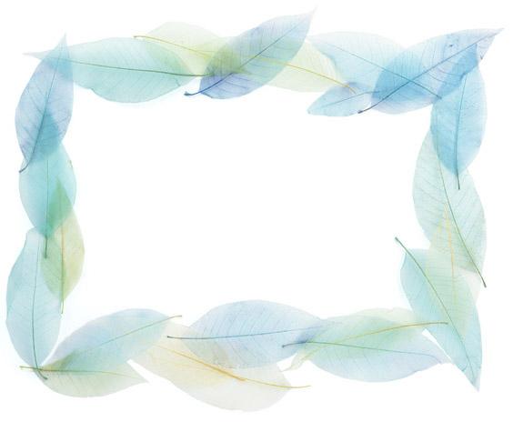اطارات جميلة للتصميم ,صور براويز ملونة وجميلة للمصميمين s_1369145658_196.jpg
