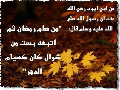 ������ �� ����� ����� , ������ �� ����� ����� ������ , ������ ������ ����� new_1434157655_540.j