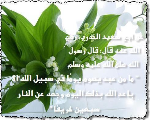 ������ �� ����� ����� , ������ �� ����� ����� ������ , ������ ������ ����� new_1434157655_863.j