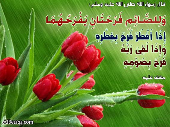 ������ �� ����� ����� , ������ �� ����� ����� ������ , ������ ������ ����� new_1434157658_318.j