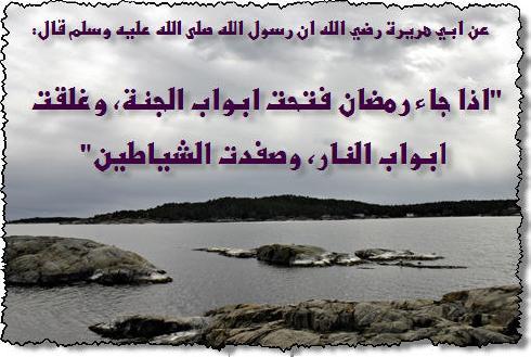 ������ �� ����� ����� , ������ �� ����� ����� ������ , ������ ������ ����� new_1434157658_664.j