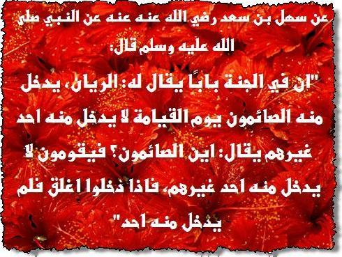 ������ �� ����� ����� , ������ �� ����� ����� ������ , ������ ������ ����� new_1434157662_746.j